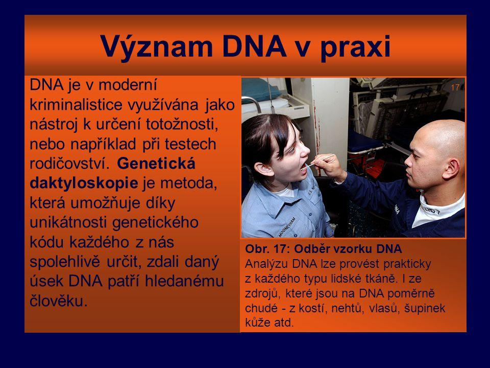 Význam DNA v praxi DNA je v moderní kriminalistice využívána jako