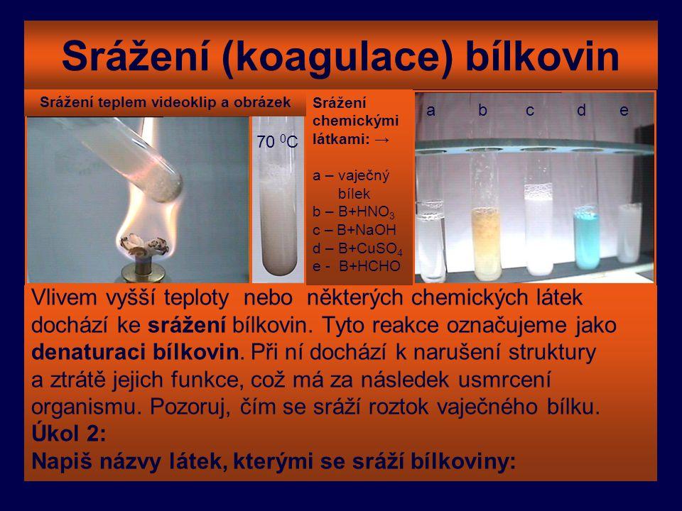 Srážení (koagulace) bílkovin