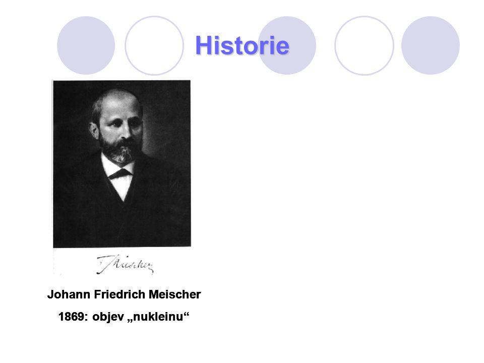 Johann Friedrich Meischer