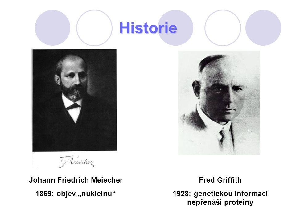"""Historie Johann Friedrich Meischer 1869: objev """"nukleinu"""