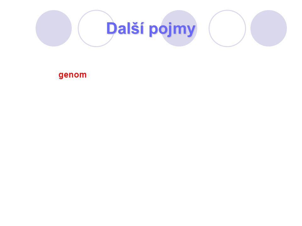 Další pojmy genom