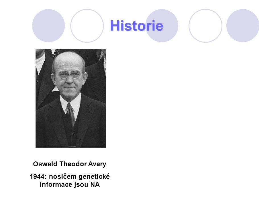 1944: nosičem genetické informace jsou NA