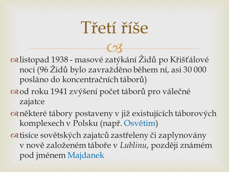 Třetí říše listopad 1938 - masové zatýkání Židů po Křišťálové noci (96 Židů bylo zavražděno během ní, asi 30 000 posláno do koncentračních táborů)