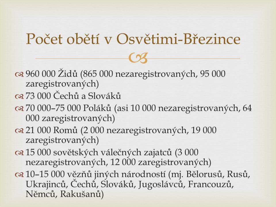 Počet obětí v Osvětimi-Březince