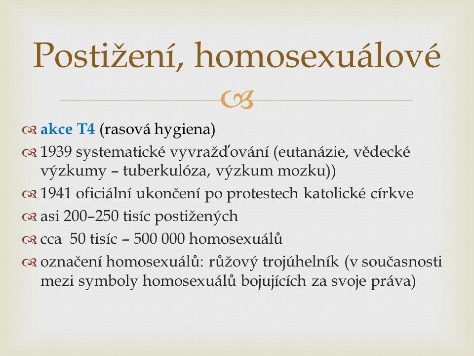 Postižení, homosexuálové