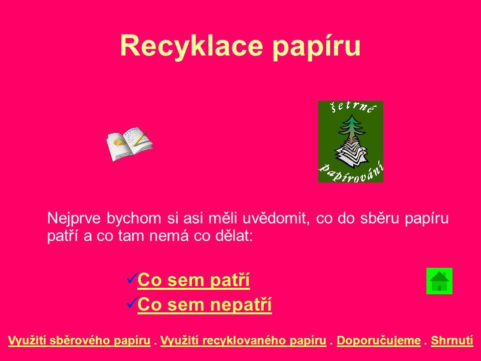 Recyklace papíru Co sem patří Co sem nepatří