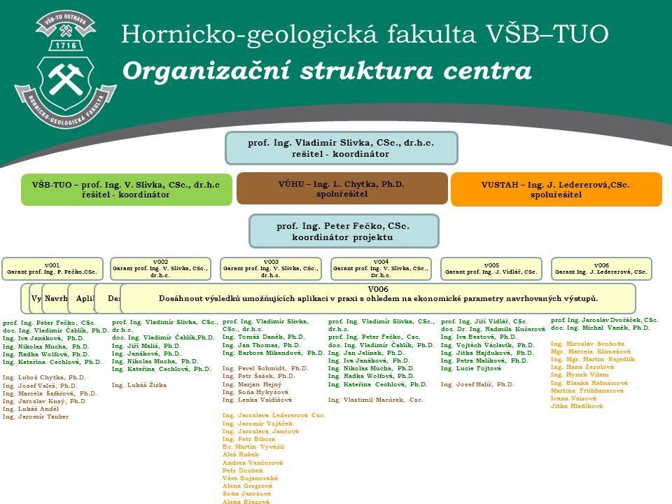 Organizační struktura centra