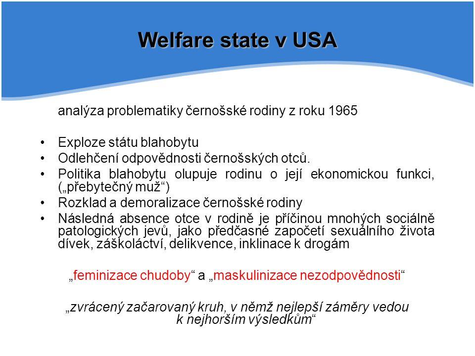 """""""feminizace chudoby a """"maskulinizace nezodpovědnosti"""