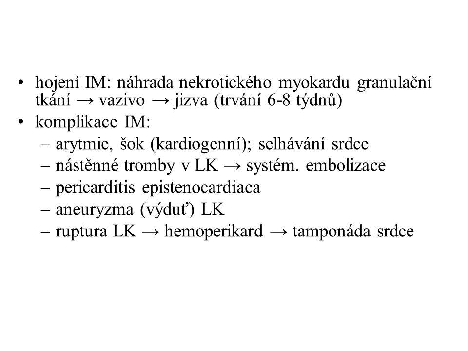 hojení IM: náhrada nekrotického myokardu granulační tkání → vazivo → jizva (trvání 6-8 týdnů)