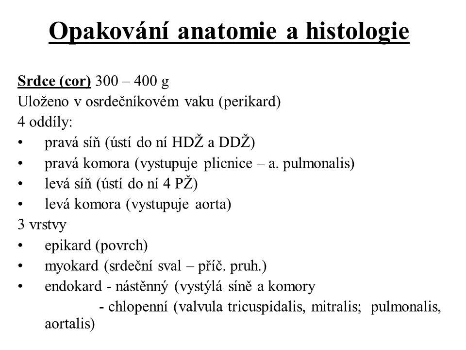 Opakování anatomie a histologie