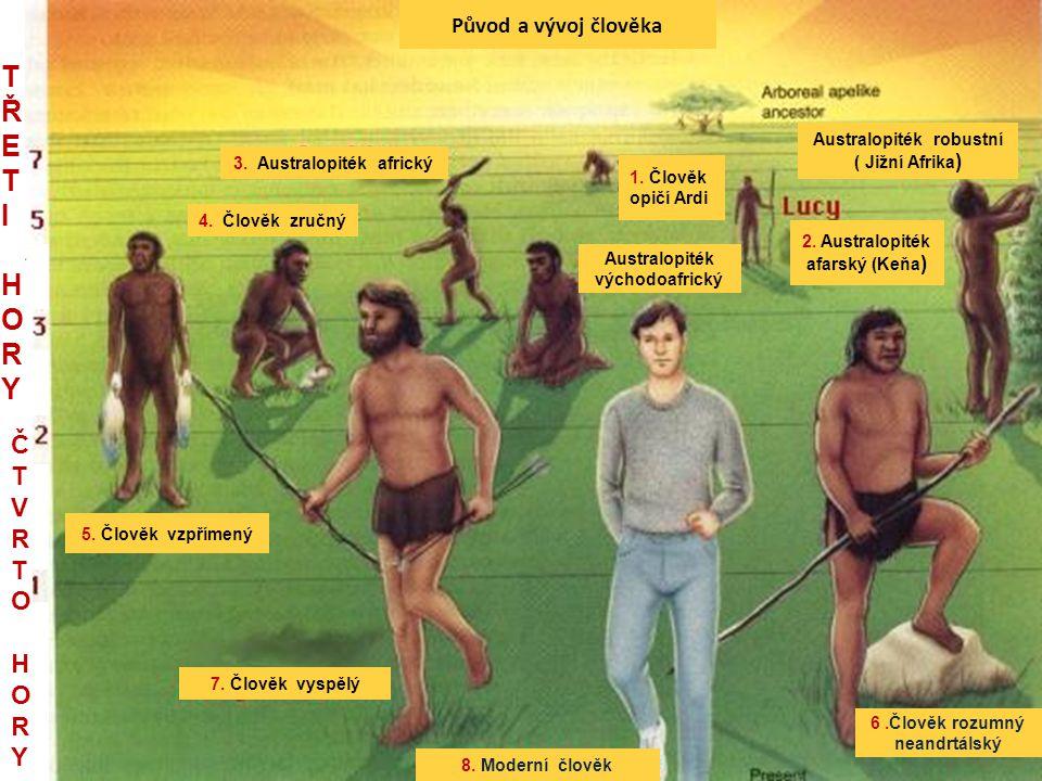 TŘETI HORY Č TVRTO HORY Původ a vývoj člověka