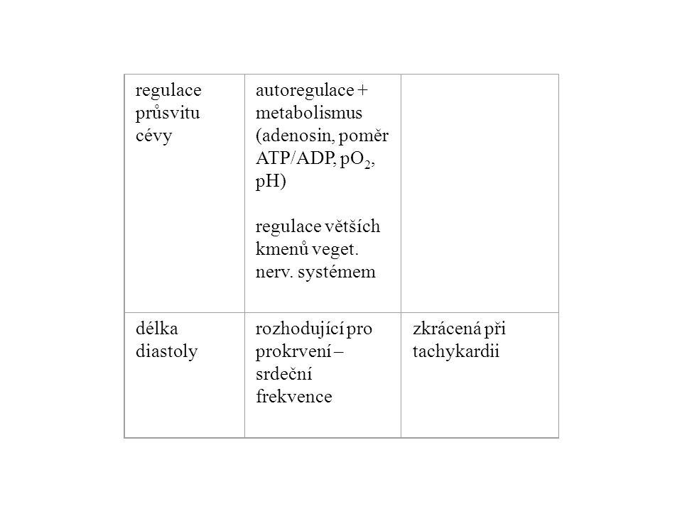 regulace průsvitu cévy