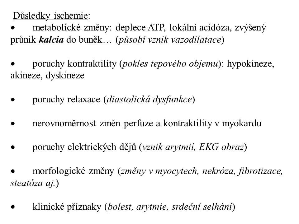 Důsledky ischemie: · metabolické změny: deplece ATP, lokální acidóza, zvýšený průnik kalcia do buněk… (působí vznik vazodilatace)