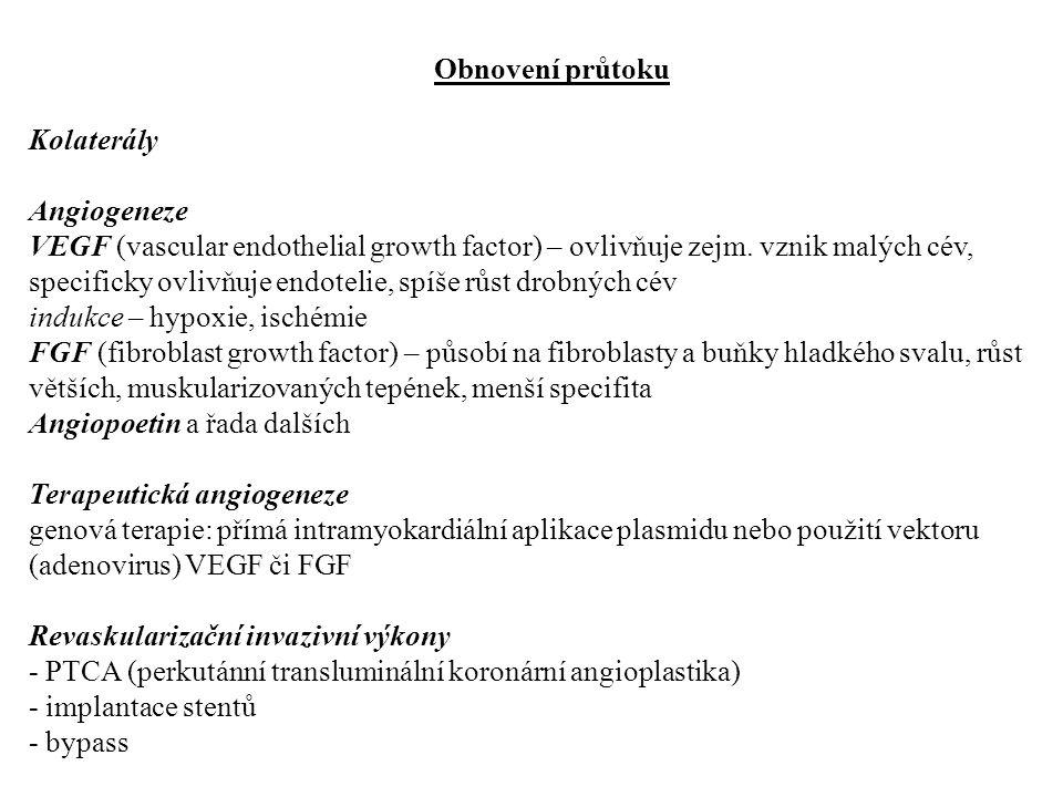 Obnovení průtoku Kolaterály. Angiogeneze.