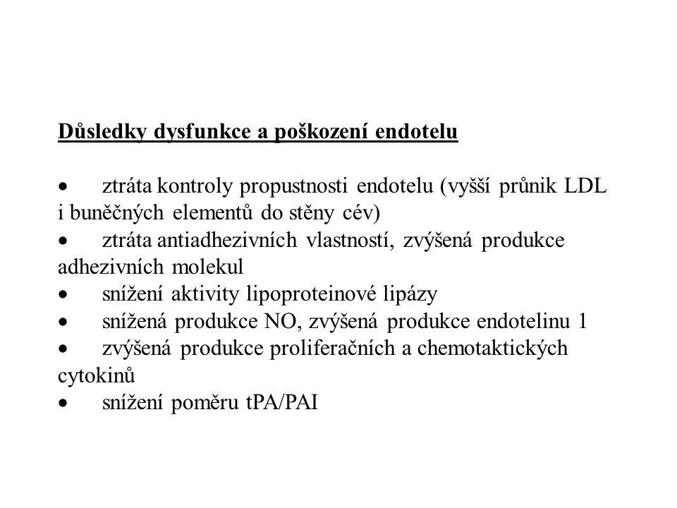 Důsledky dysfunkce a poškození endotelu