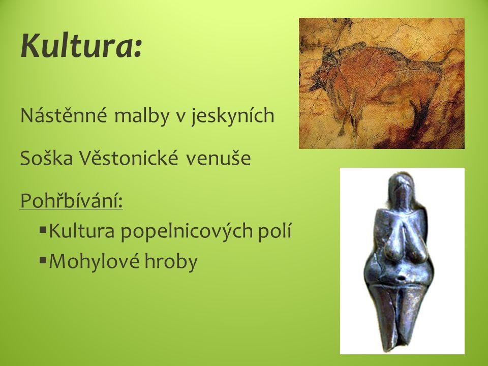 Kultura: Nástěnné malby v jeskyních Soška Věstonické venuše