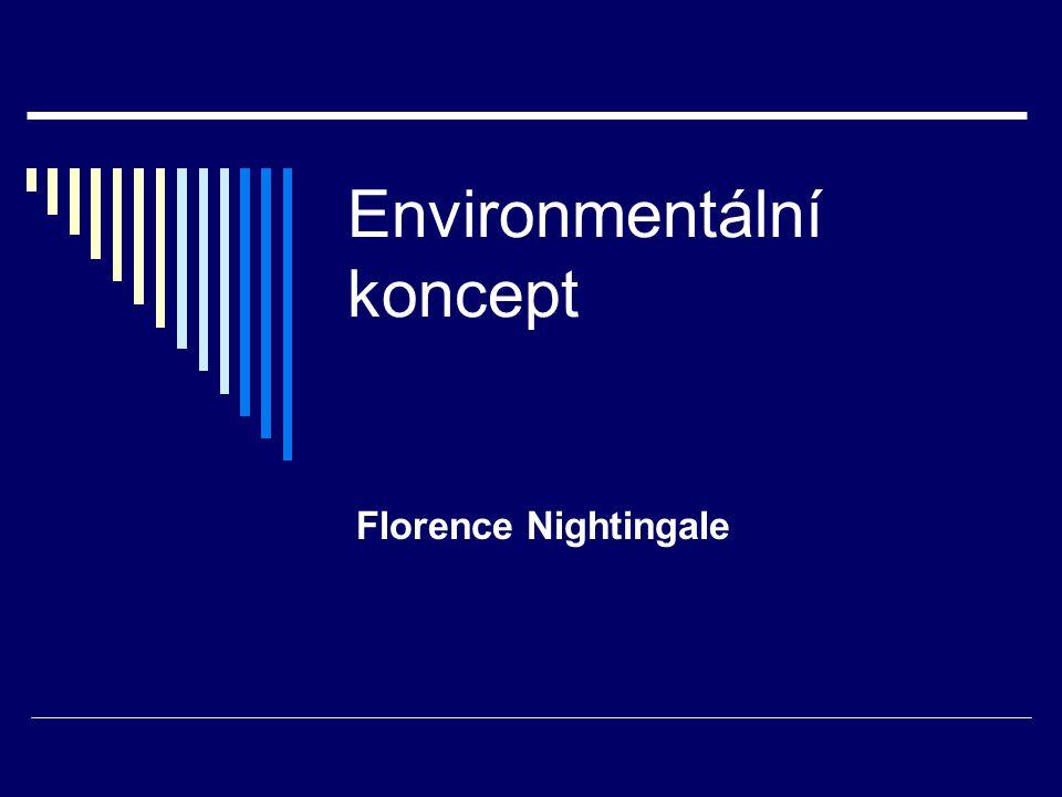 Environmentální koncept
