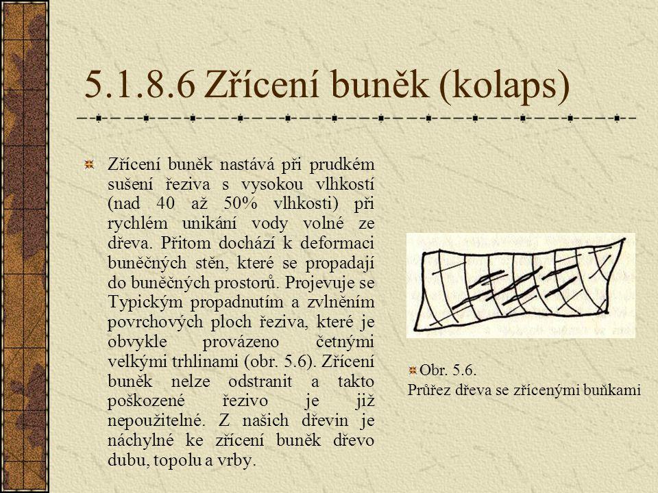 5.1.8.6 Zřícení buněk (kolaps)
