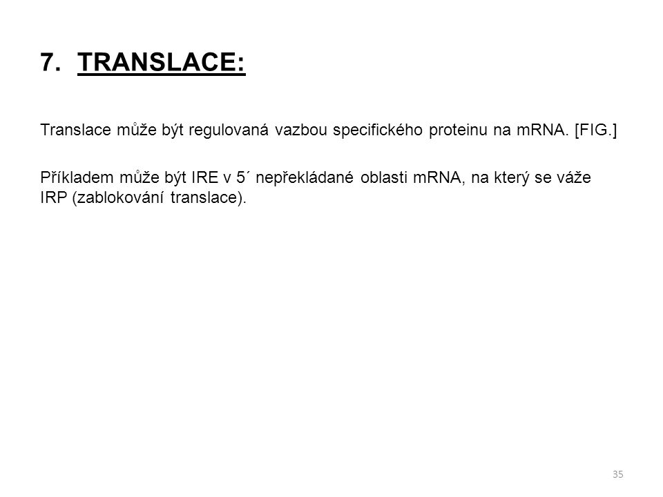 TRANSLACE:
