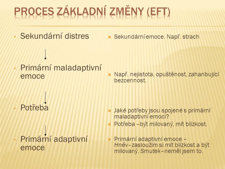 Proces základní změny (EFT)