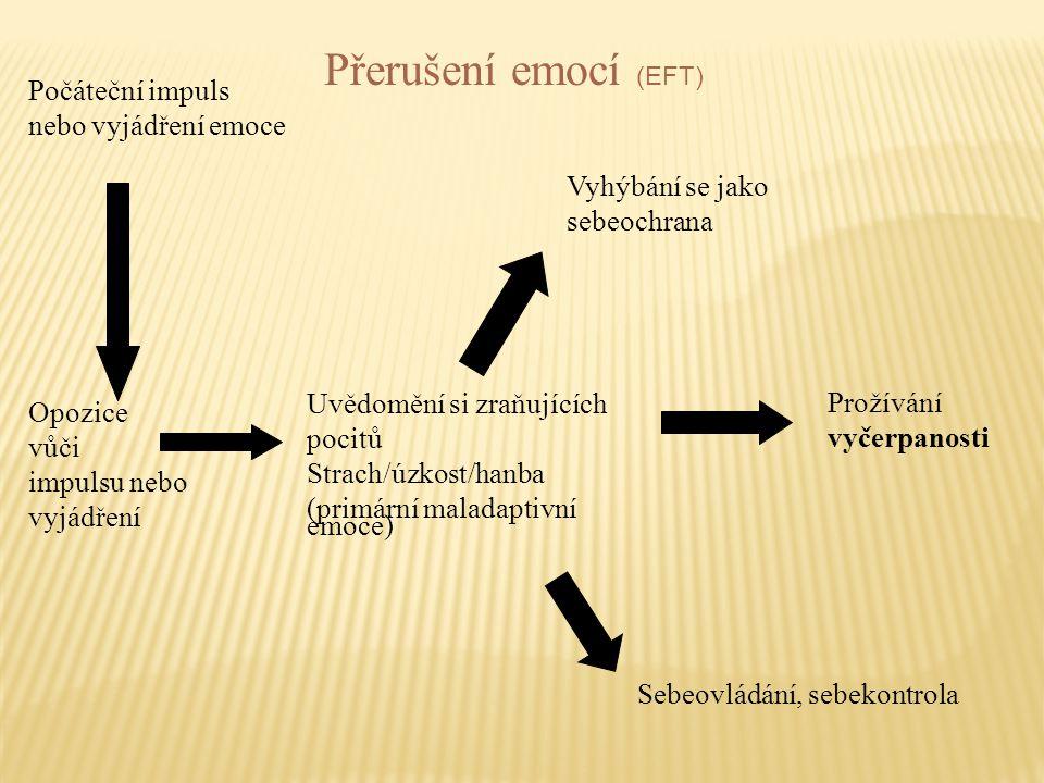 Přerušení emocí (EFT) Počáteční impuls nebo vyjádření emoce