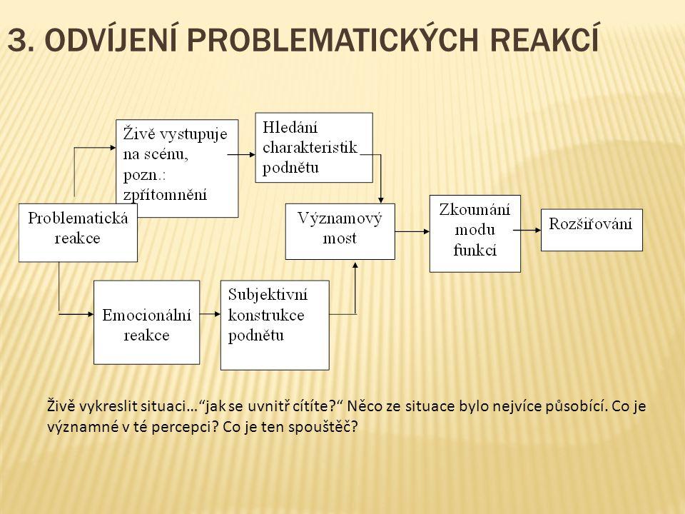 3. ODVÍJENÍ PROBLEMATICKÝCH REAKCÍ