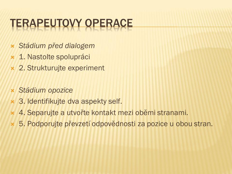 Terapeutovy operace Stádium před dialogem 1. Nastolte spolupráci