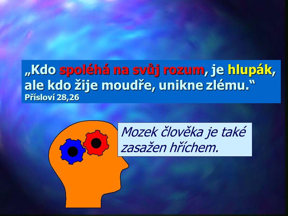 """""""Kdo spoléhá na svůj rozum, je hlupák, ale kdo žije moudře, unikne zlému. Přísloví 28,26"""