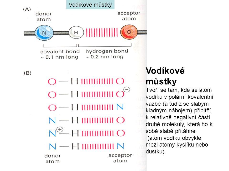 Vodíkové můstky Vodíkové můstky