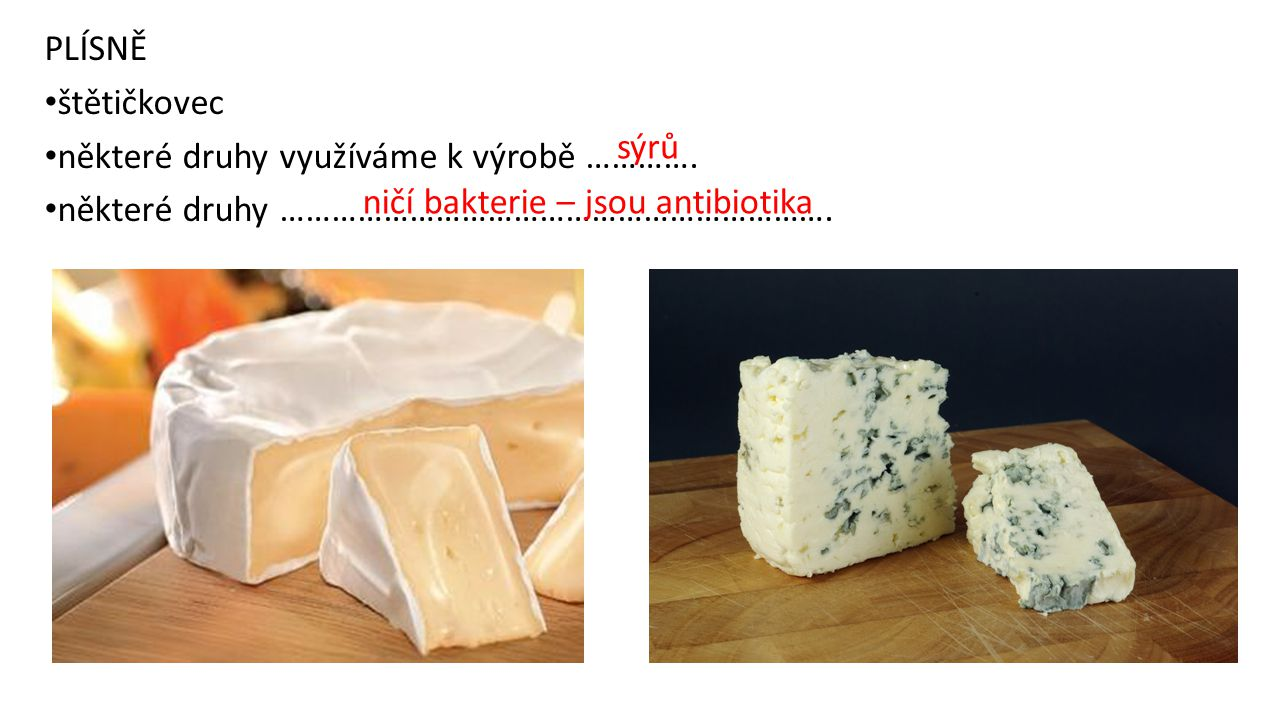 PLÍSNĚ štětičkovec. některé druhy využíváme k výrobě …………. některé druhy ………………………………………………………. sýrů.