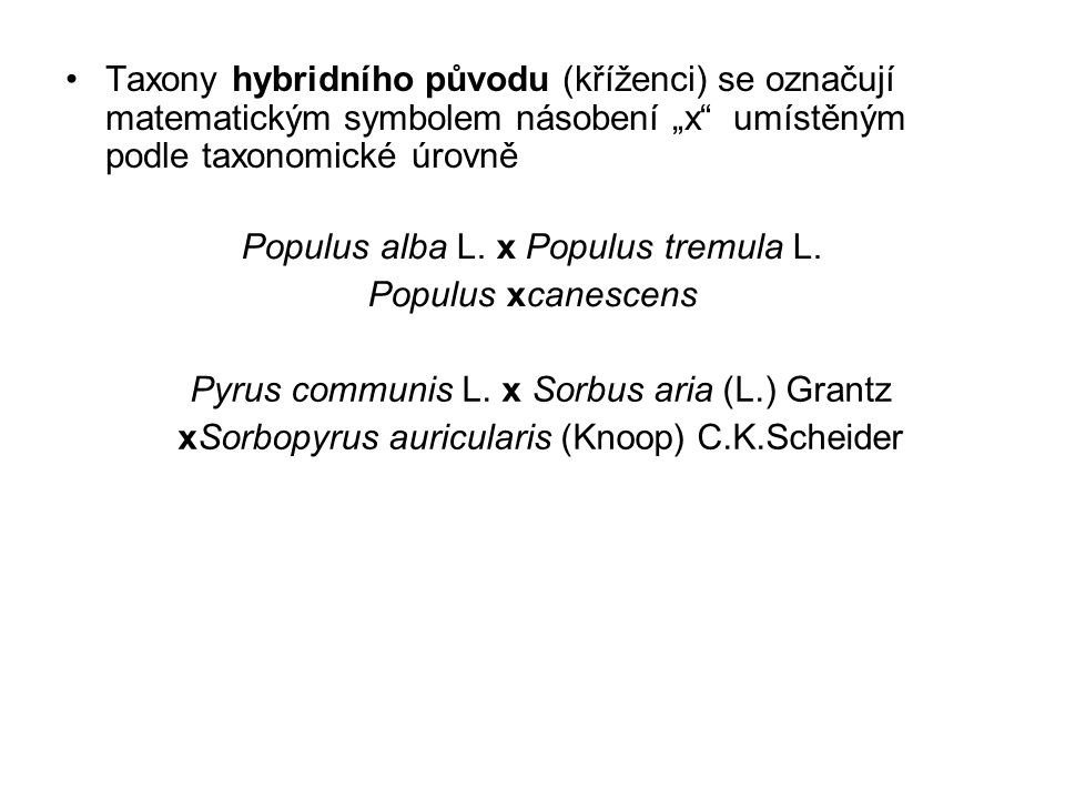 Populus alba L. x Populus tremula L. Populus xcanescens