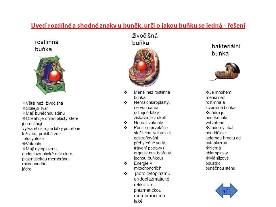 Uveď rozdílné a shodné znaky u buněk, urči o jakou buňku se jedná - řešení