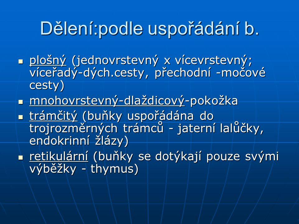 Dělení:podle uspořádání b.