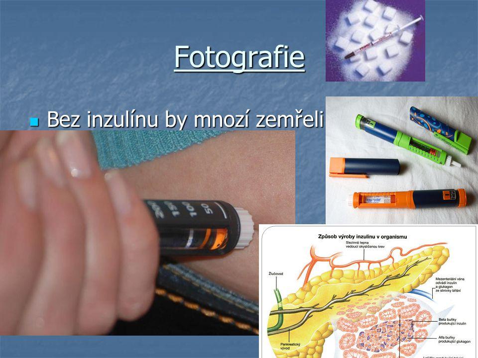 Fotografie Bez inzulínu by mnozí zemřeli