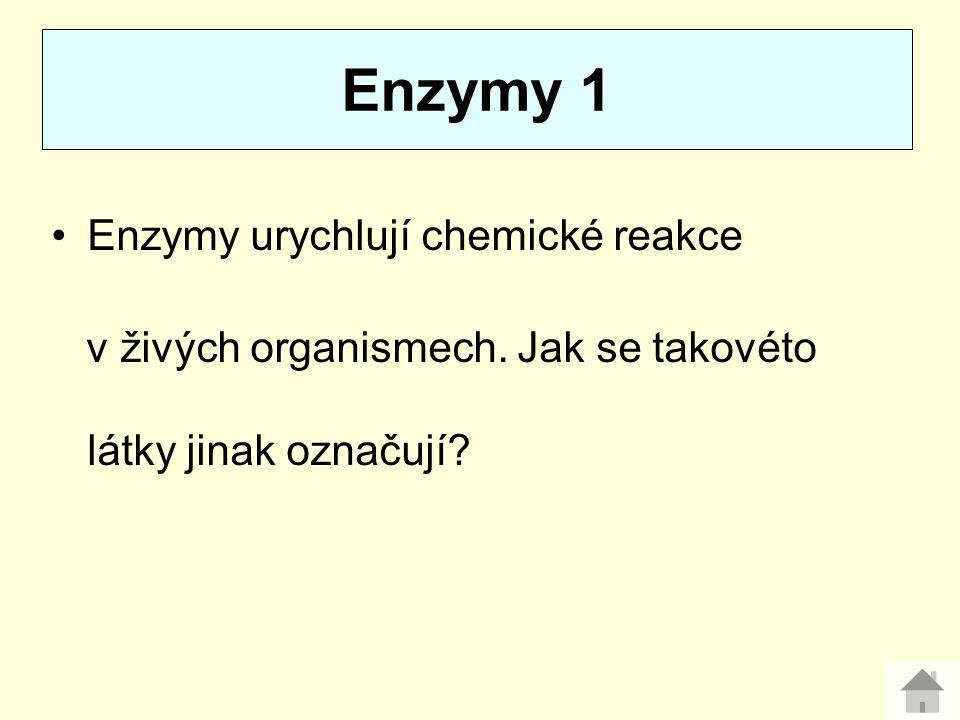 Enzymy 1 Enzymy urychlují chemické reakce