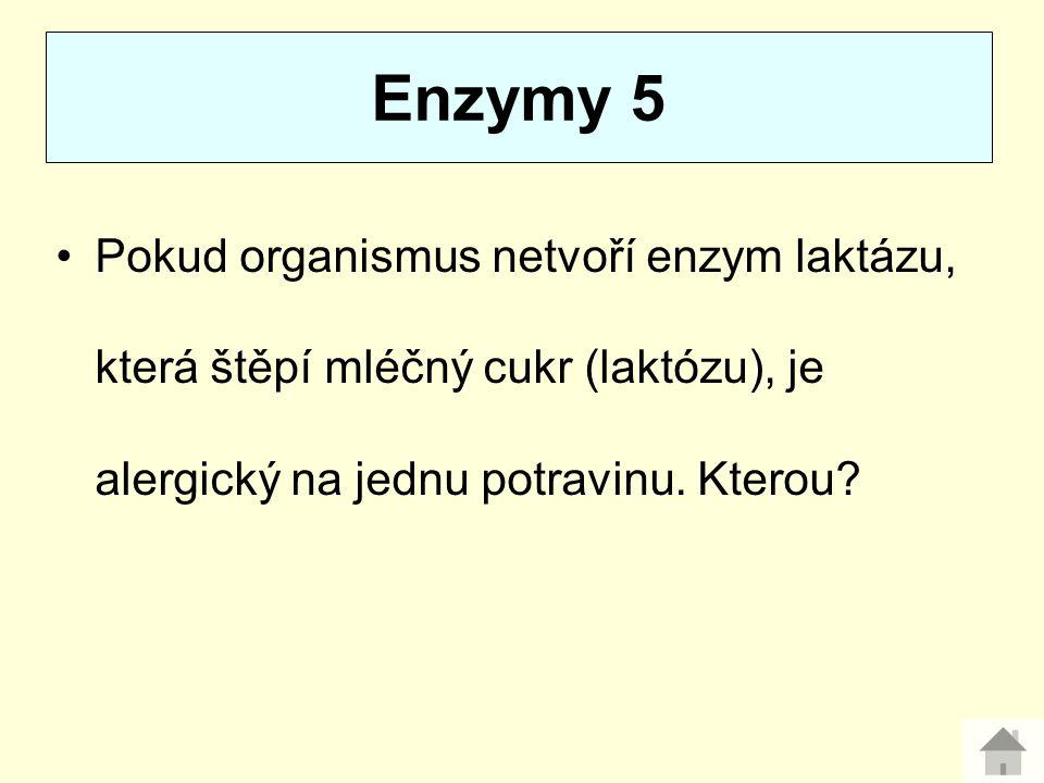 Enzymy 5 Pokud organismus netvoří enzym laktázu, která štěpí mléčný cukr (laktózu), je alergický na jednu potravinu.