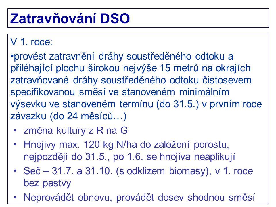 Zatravňování DSO V 1. roce: