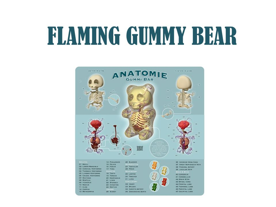 FLAMING GUMMY BEAR