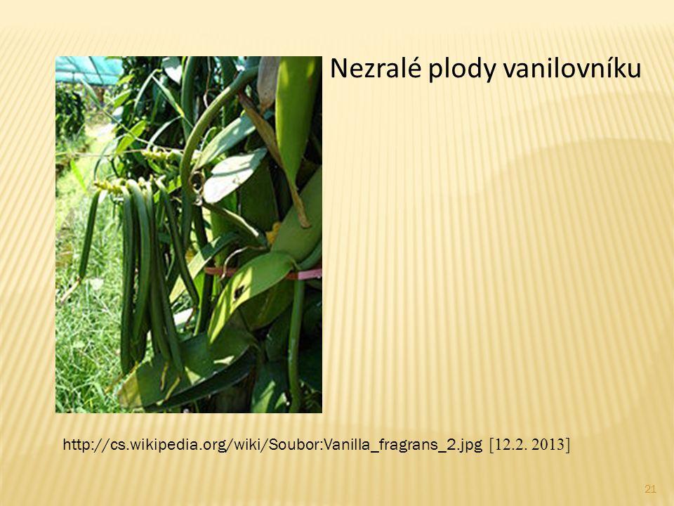 Nezralé plody vanilovníku