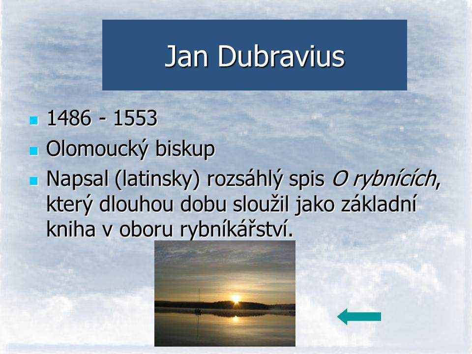 Jan Dubravius 1486 - 1553 Olomoucký biskup