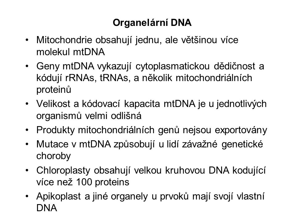 Organelární DNA Mitochondrie obsahují jednu, ale většinou více molekul mtDNA.