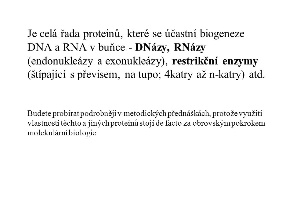 Je celá řada proteinů, které se účastní biogeneze DNA a RNA v buňce - DNázy, RNázy (endonukleázy a exonukleázy), restrikční enzymy (štípající s převisem, na tupo; 4katry až n-katry) atd.