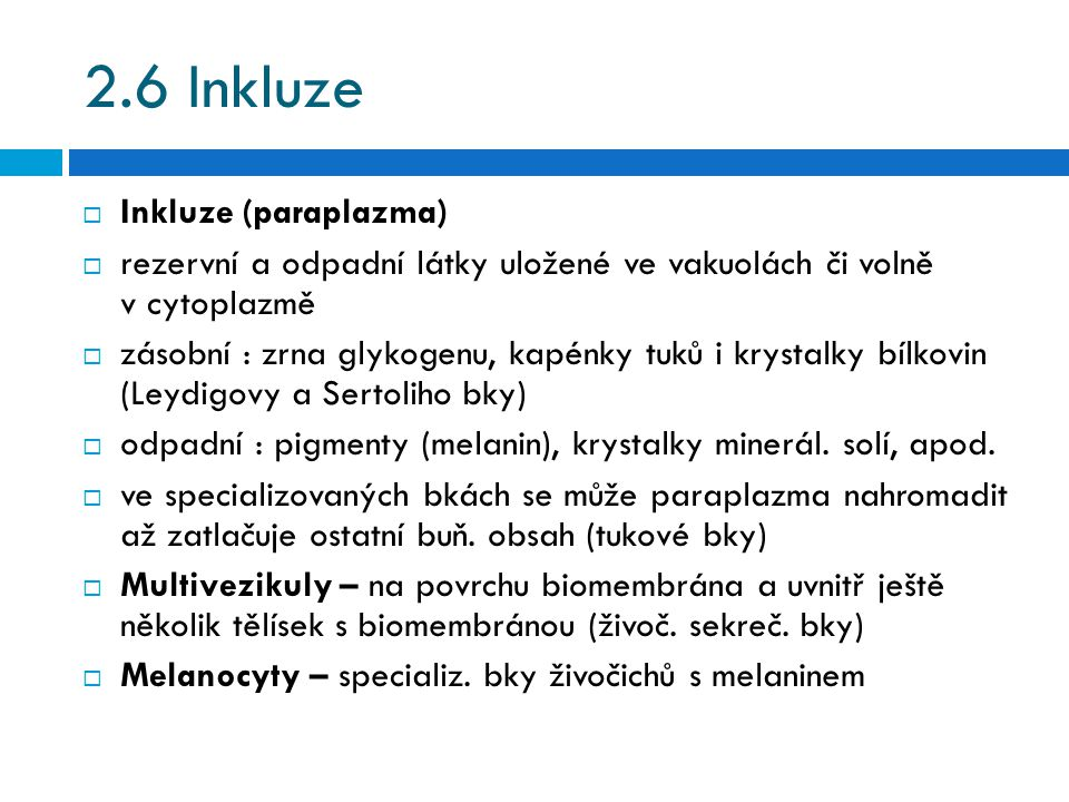 2.6 Inkluze Inkluze (paraplazma)