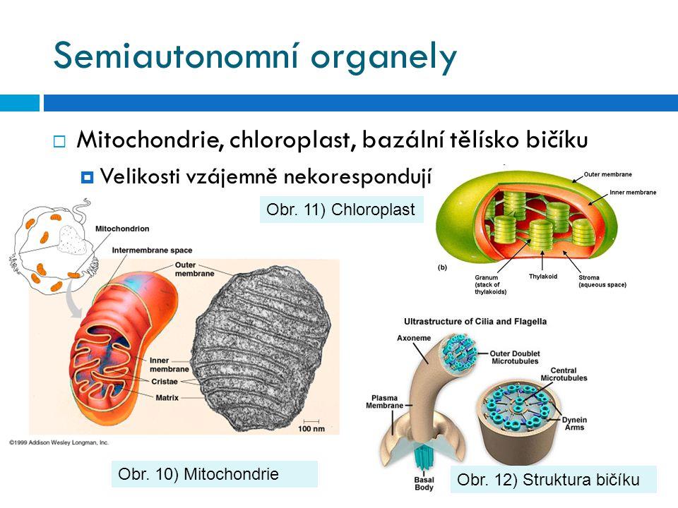 Semiautonomní organely
