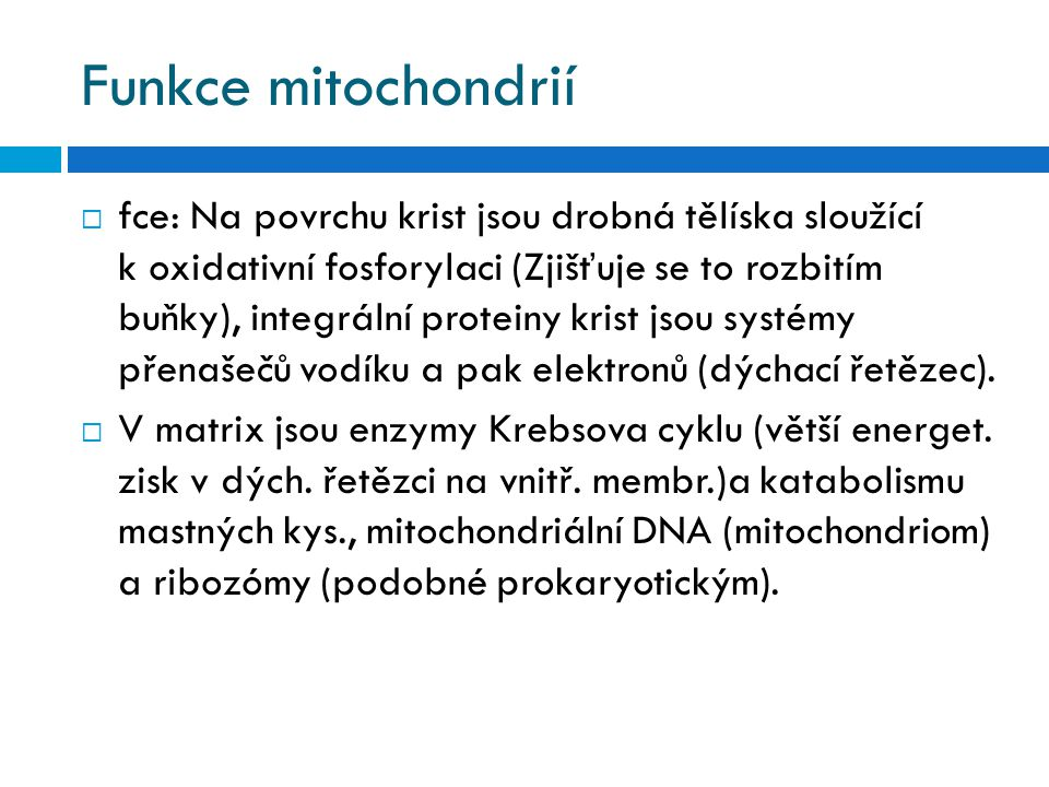 Funkce mitochondrií