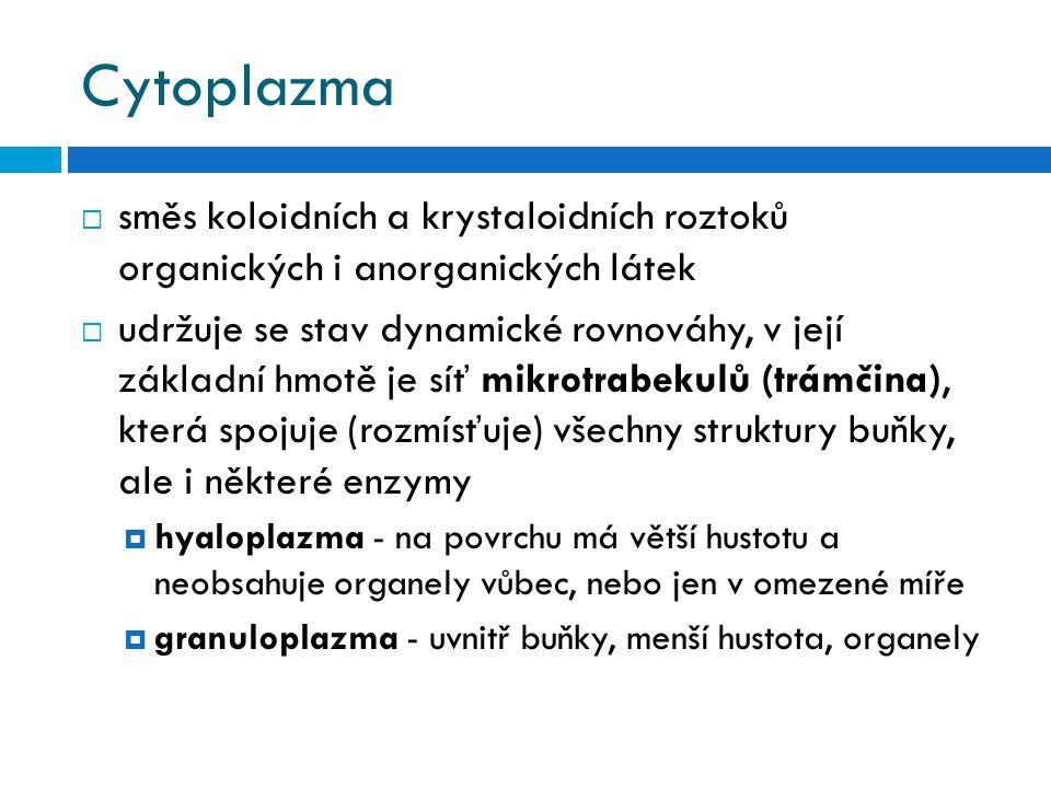Cytoplazma směs koloidních a krystaloidních roztoků organických i anorganických látek.
