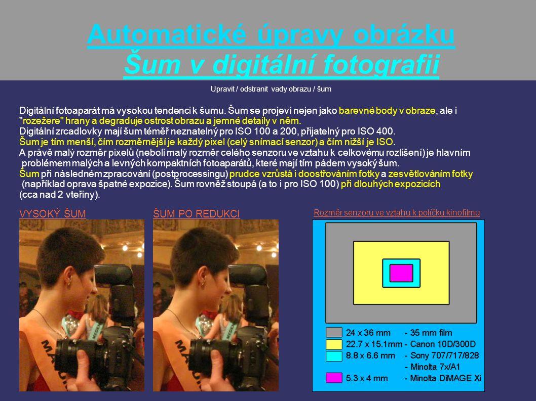 Automatické úpravy obrázku Šum v digitální fotografii