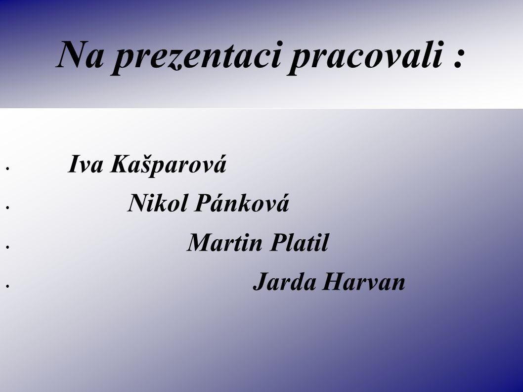 Na prezentaci pracovali :