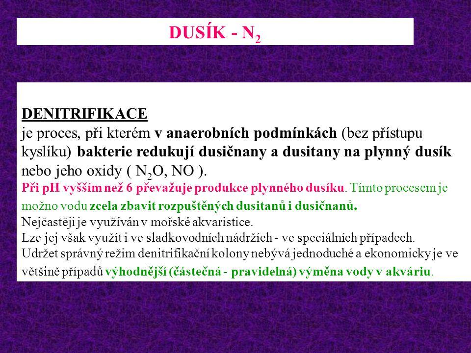 DUSÍK - N2