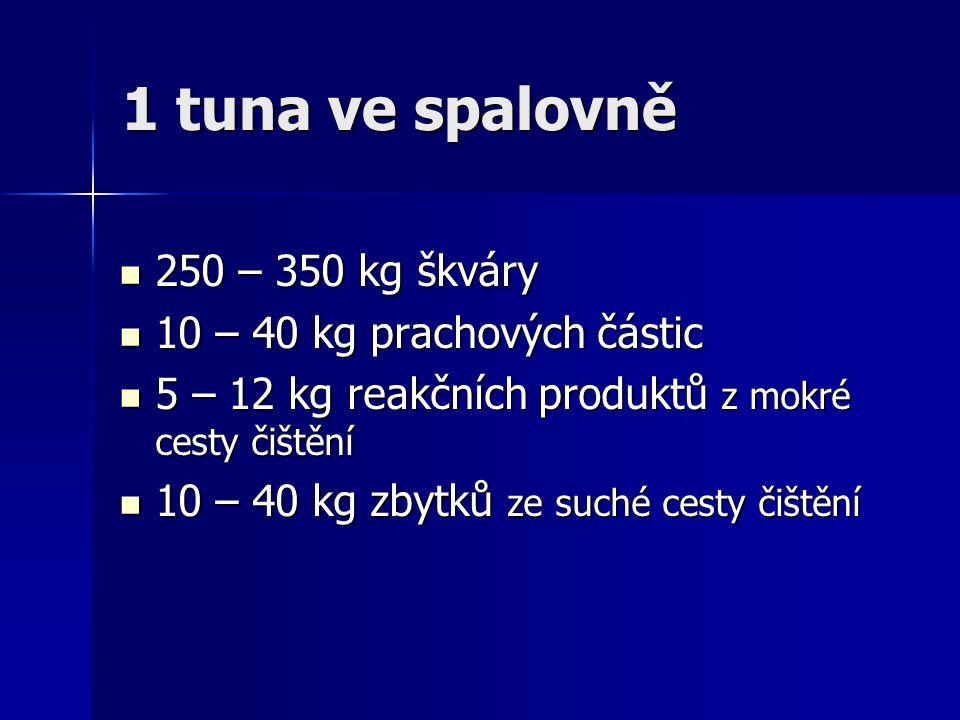 1 tuna ve spalovně 250 – 350 kg škváry 10 – 40 kg prachových částic